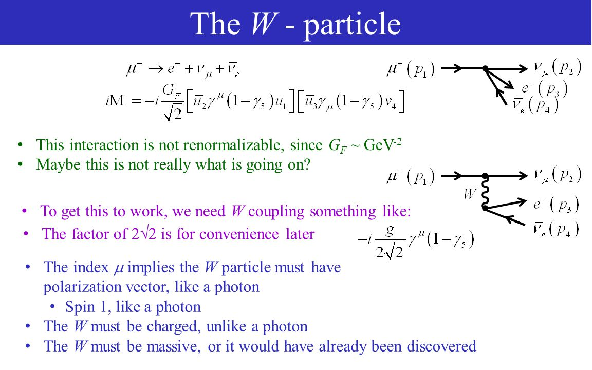 The W - particle This interaction is not renormalizable, since G F ~ GeV -2 Maybe this is not really what is going on.
