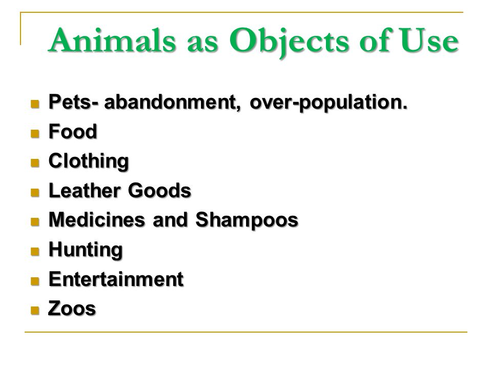 Animals as Objects of Use Animals as Objects of Use Pets- abandonment, over-population.