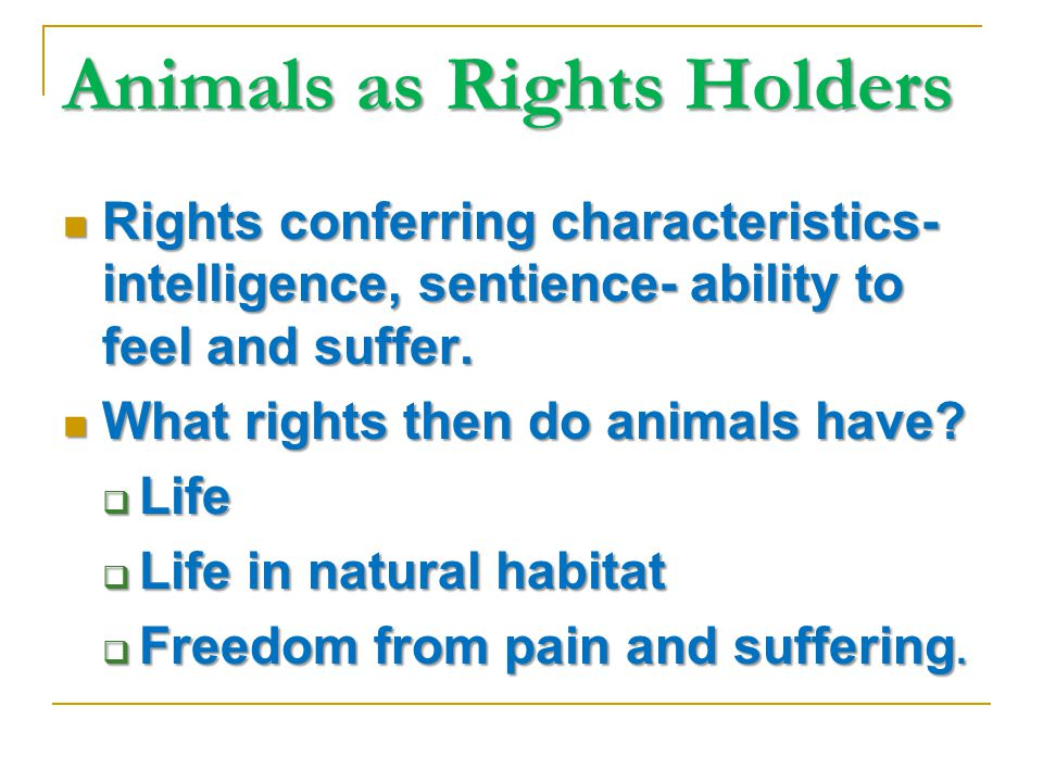 Animals as Rights Holders Rights conferring characteristics- intelligence, sentience- ability to feel and suffer.