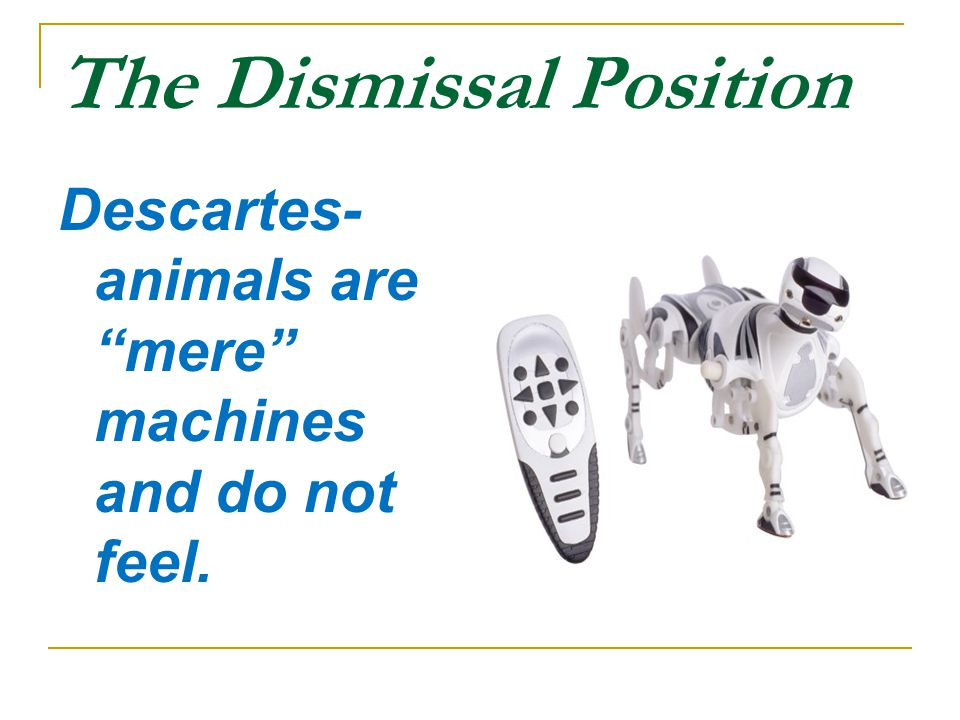 The Dismissal Position Descartes- animals are mere machines and do not feel.