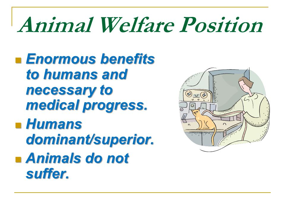 Animal Welfare Position Enormous benefits to humans and necessary to medical progress.
