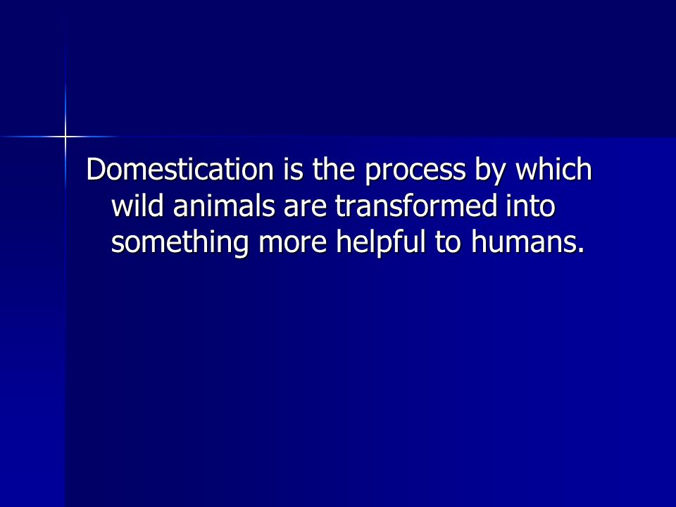 Domestication is the process by which wild animals are transformed into something more helpful to humans.