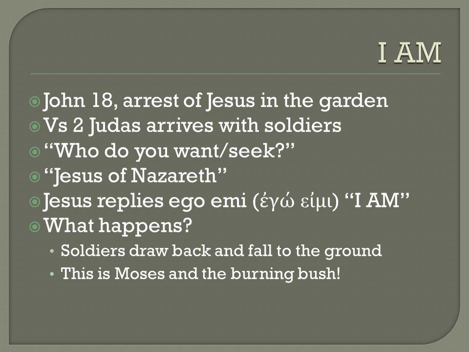 " John 18, arrest of Jesus in the garden  Vs 2 Judas arrives with soldiers  ""Who do you want/seek?""  ""Jesus of Nazareth""  Jesus replies ego emi ("