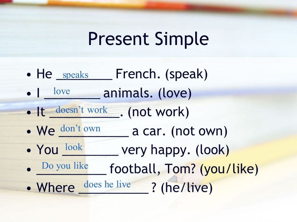Present Simple He ________ French. (speak) I ________ animals. (love) It __________. (not work) We __________ a car. (not own) You ________ very happy