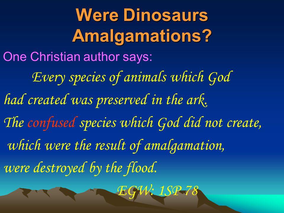 Were Dinosaurs Amalgamations.