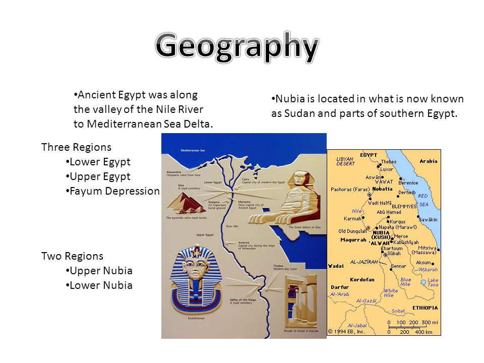 Ancient Egypt was along the valley of the Nile River to Mediterranean Sea Delta. Three Regions Lower Egypt Upper Egypt Fayum Depression Nubia is locat