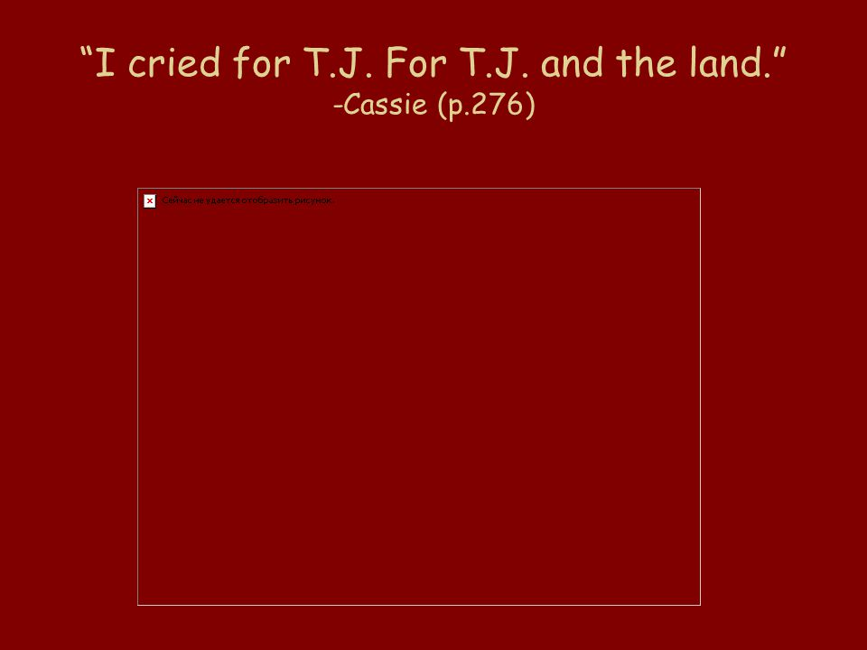 I cried for T.J. For T.J. and the land. -Cassie (p.276)