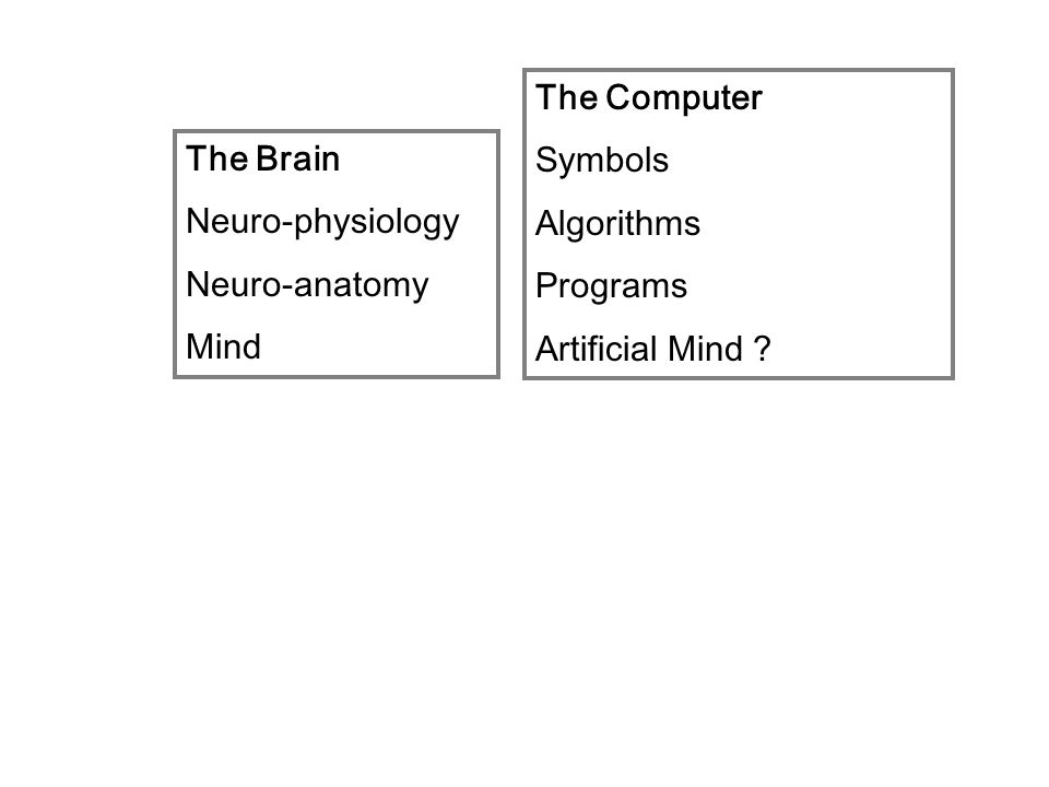 The Brain Neuro-physiology Neuro-anatomy Mind The Computer Symbols Algorithms Programs Artificial Mind