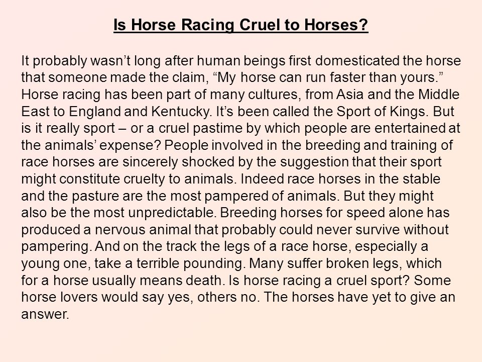 Is Horse Racing Cruel to Horses.