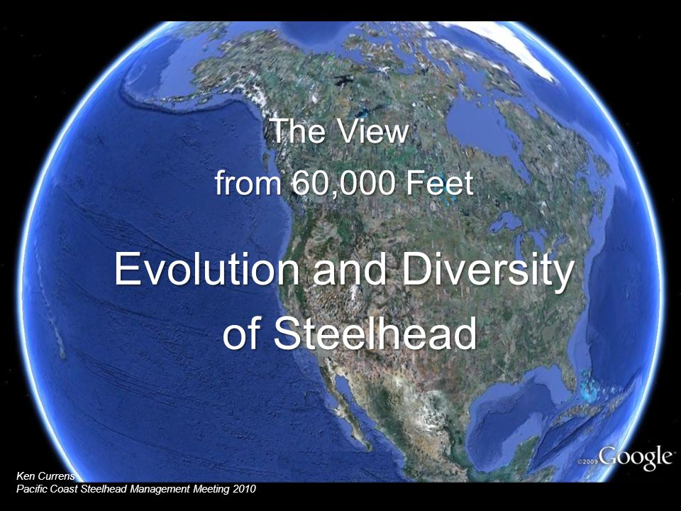 reflect Extant distribution does not simply reflect colonization to the south Extant distribution does not simply reflect southward colonization Eocene Miocene OligocenePleistocenePliocene 23 5.3 34 2.6 Species & Subpecies of North American trout Hucho Brachymystax Salvelinus Oncorhynchus Salmo Oncorhynchus
