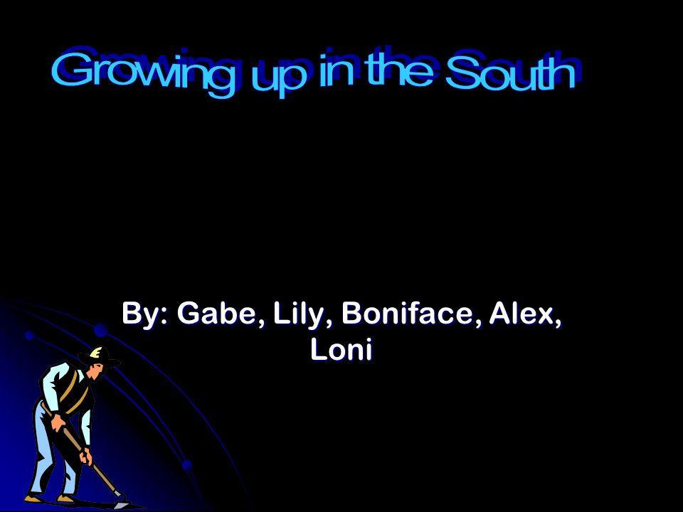 By: Gabe, Lily, Boniface, Alex, Loni