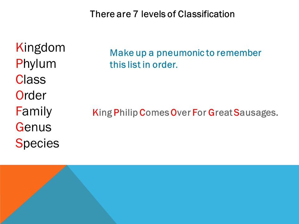 There are 7 levels of Classification Kingdom Phylum Class Order Family Genus Species Make up a pneumonic to remember this list in order. King Philip C