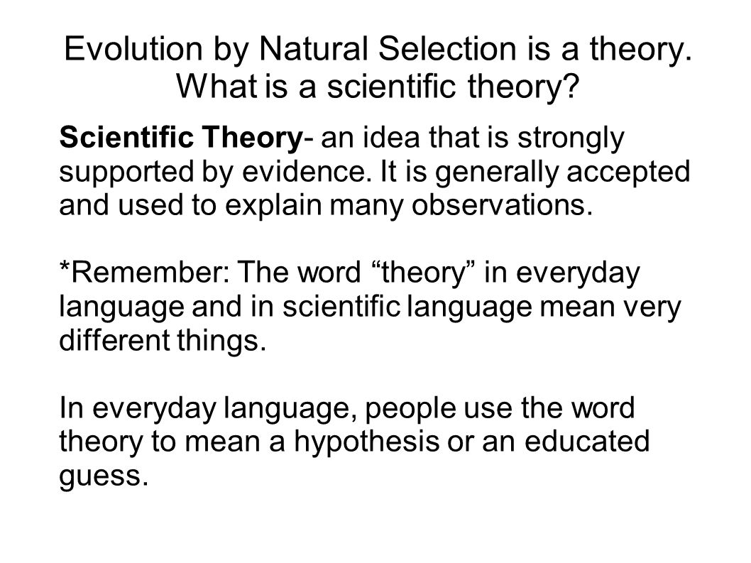 Evolution by Natural Selection is a theory. What is a scientific theory? Scientific Theory- an idea that is strongly supported by evidence. It is gene