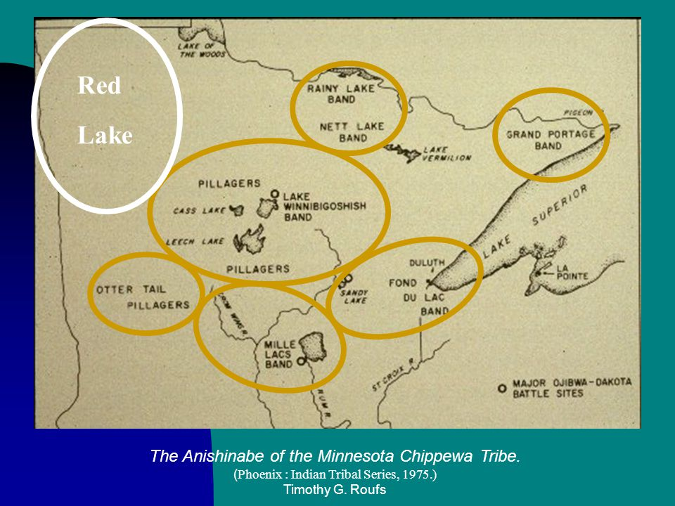 The Anishinabe of the Minnesota Chippewa Tribe. ( Phoenix : Indian Tribal Series, 1975.) Timothy G. Roufs