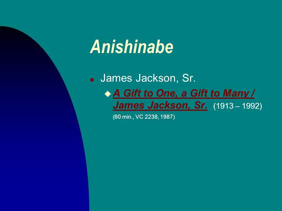 The Anishinabe of the Minnesota Chippewa Tribe. ( Phoenix : Indian Tribal Series, 1975.) Timothy G. Roufs Red Lake