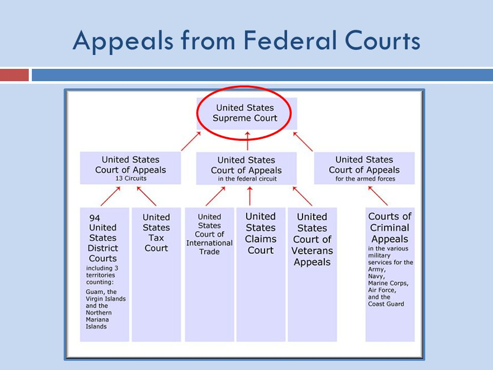 Appeals from Federal Courts
