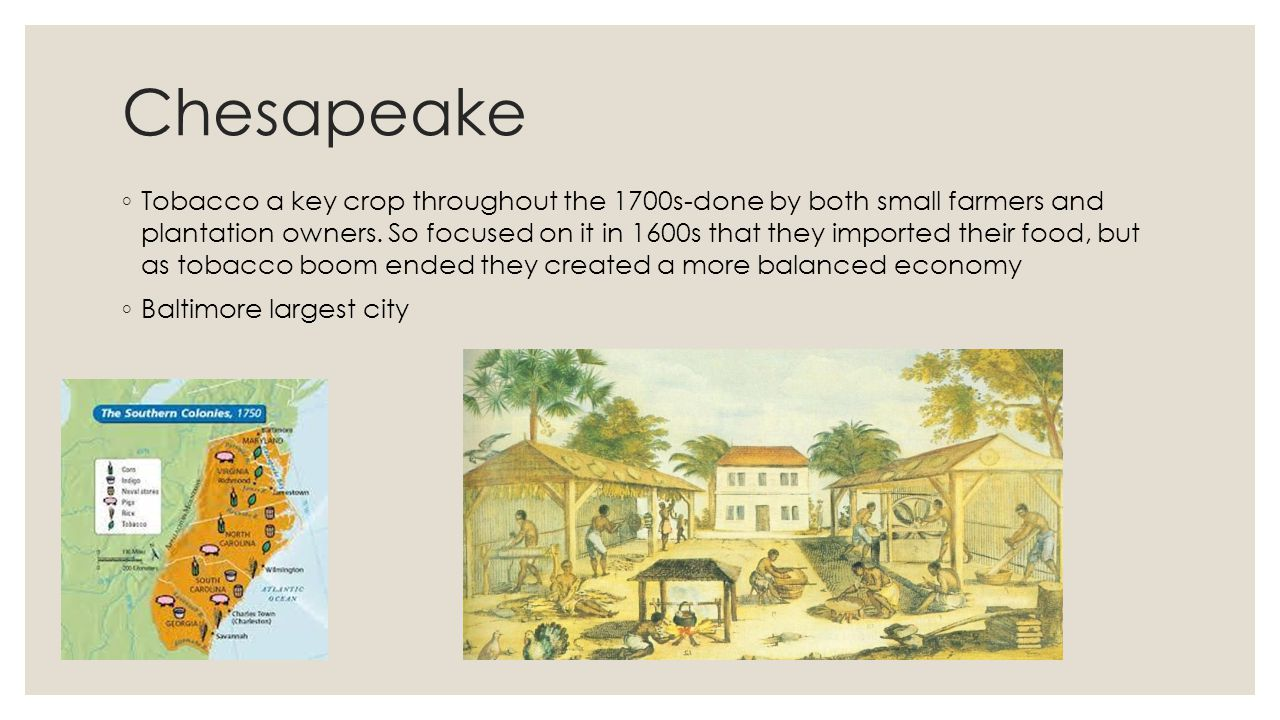 Chesapeake ◦ Tobacco a key crop throughout the 1700s-done by both small farmers and plantation owners. So focused on it in 1600s that they imported th