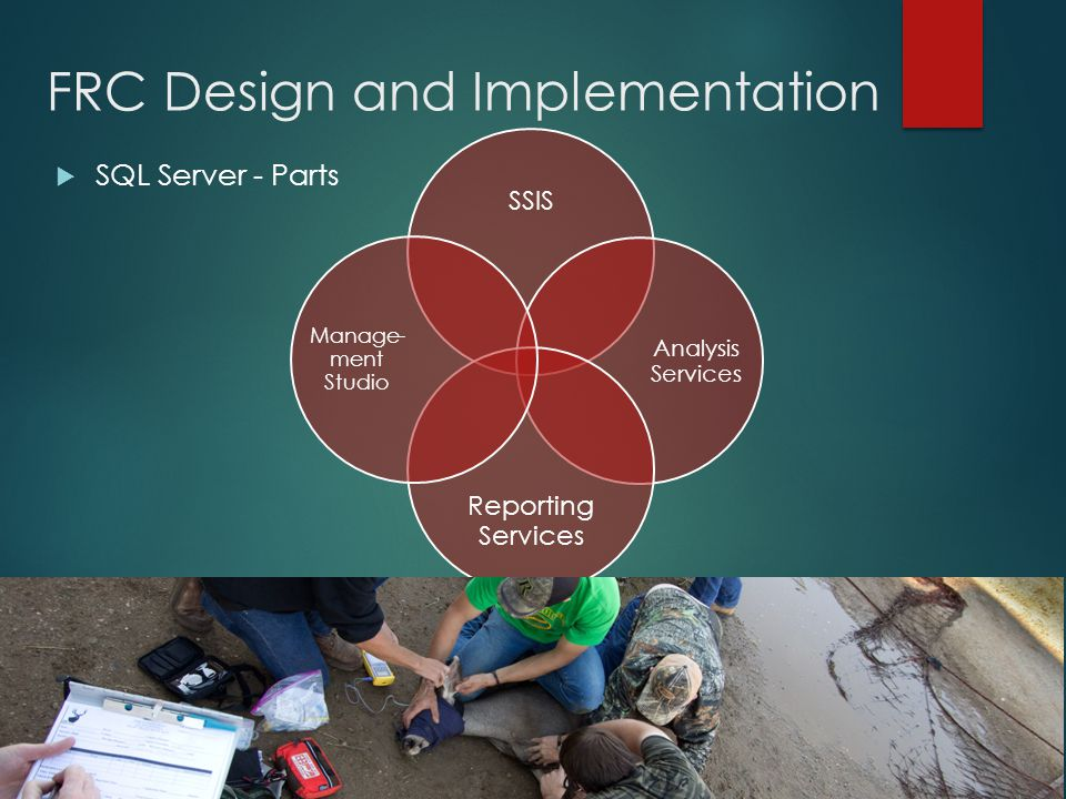 FRC Design and Implementation  SQL Server - Parts SSIS Analysis Services Reporting Services Manage- ment Studio