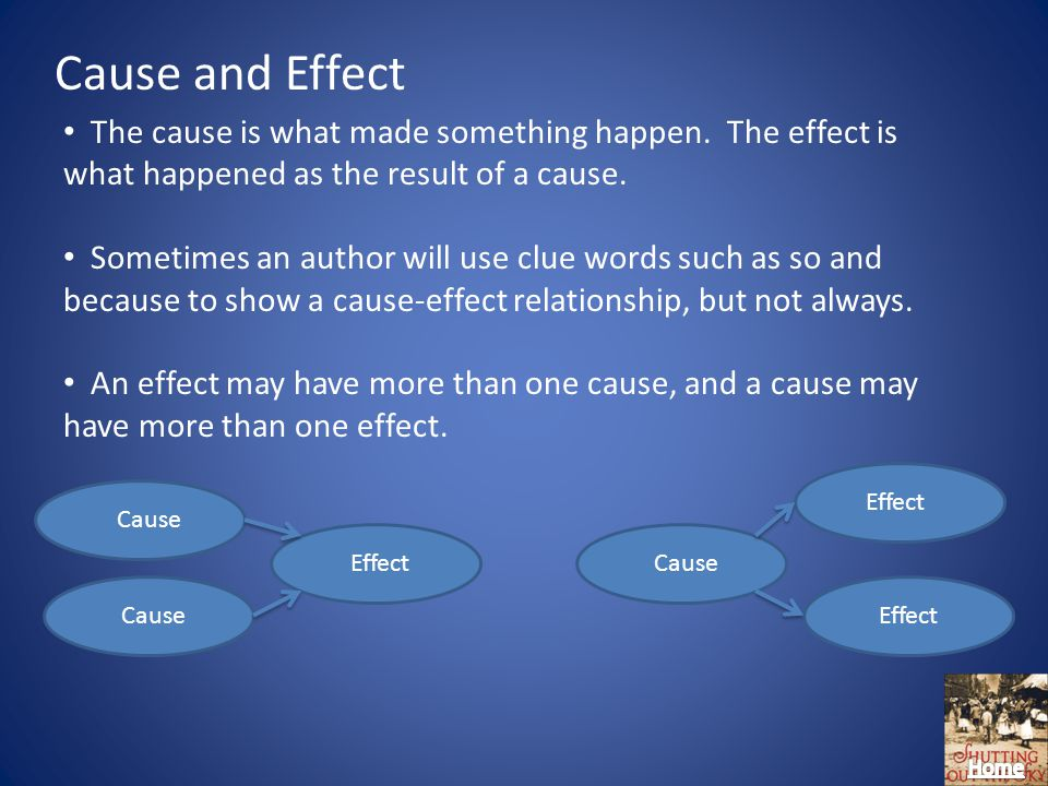 Cause and Effect The cause is what made something happen.