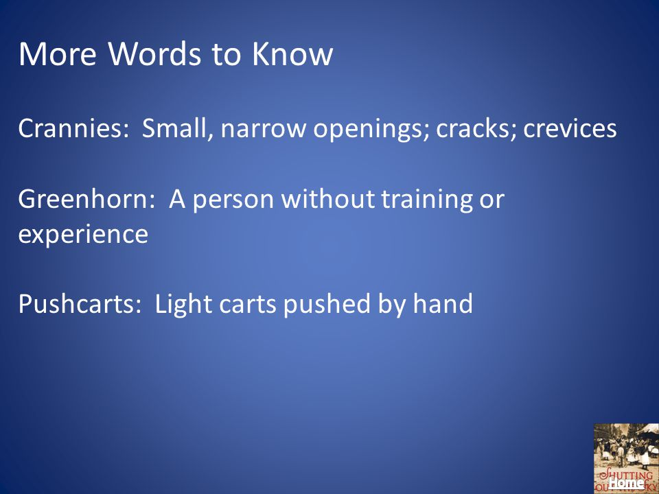 More Words to Know Crannies: Small, narrow openings; cracks; crevices Greenhorn: A person without training or experience Pushcarts: Light carts pushed by hand