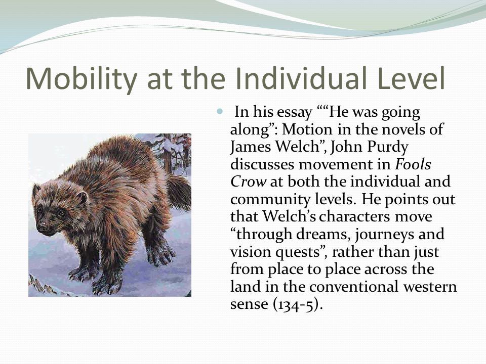 Mobility at the Individual Level In his essay He was going along : Motion in the novels of James Welch , John Purdy discusses movement in Fools Crow at both the individual and community levels.