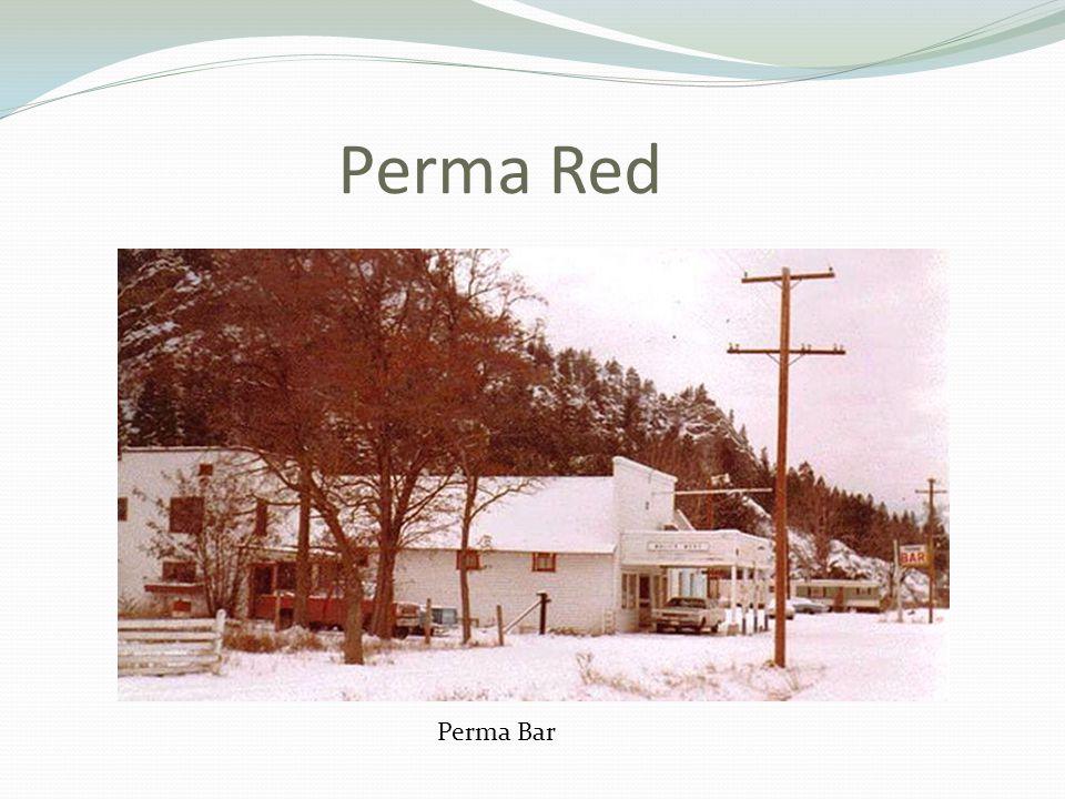 Perma Red Perma Bar