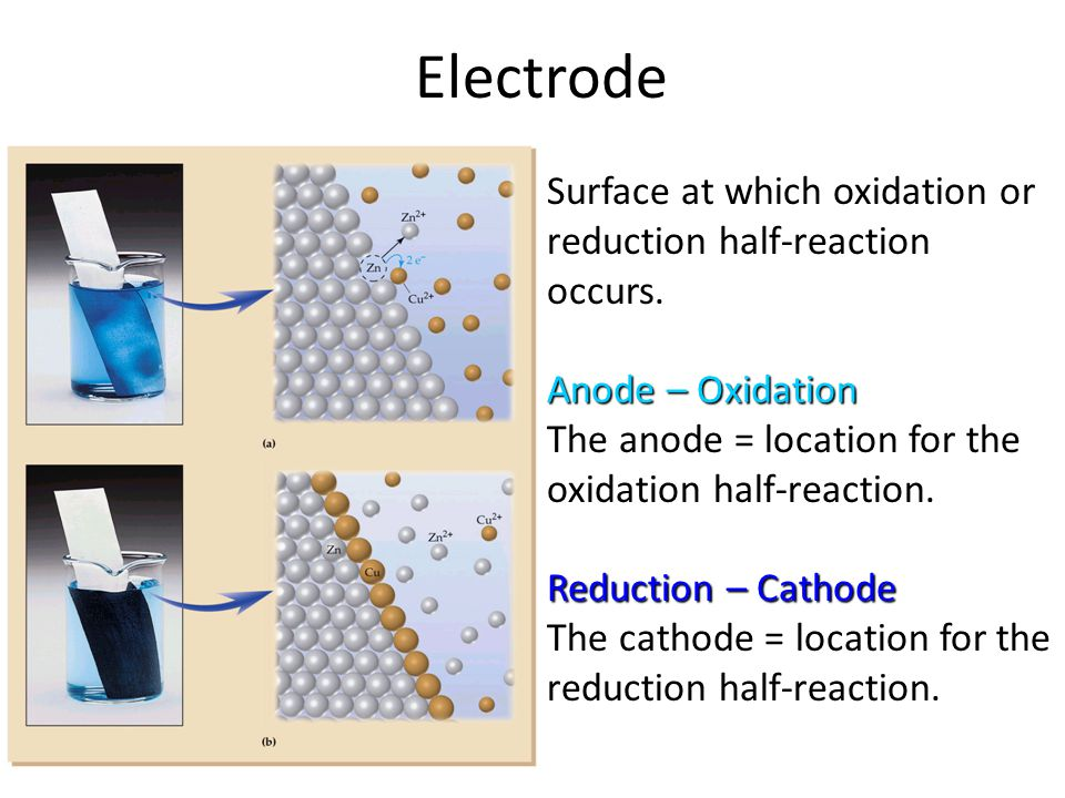 Electrode Surface at which oxidation or reduction half-reaction occurs.