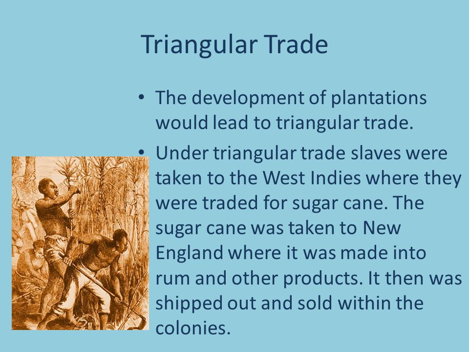 Triangular Trade The development of plantations would lead to triangular trade. Under triangular trade slaves were taken to the West Indies where they