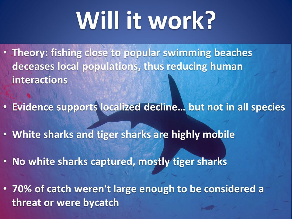 Will it work? Theory: fishing close to popular swimming beaches deceases local populations, thus reducing human interactions Theory: fishing close to