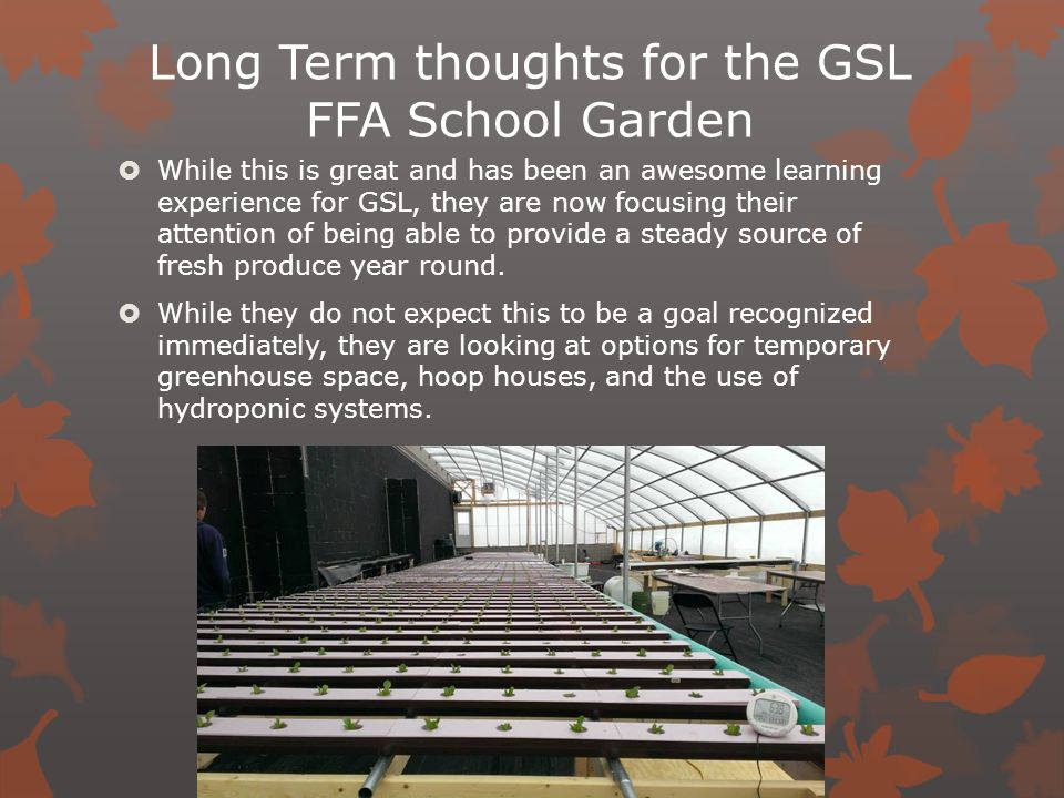 Long Term thoughts for the GSL FFA School Garden  While this is great and has been an awesome learning experience for GSL, they are now focusing their attention of being able to provide a steady source of fresh produce year round.