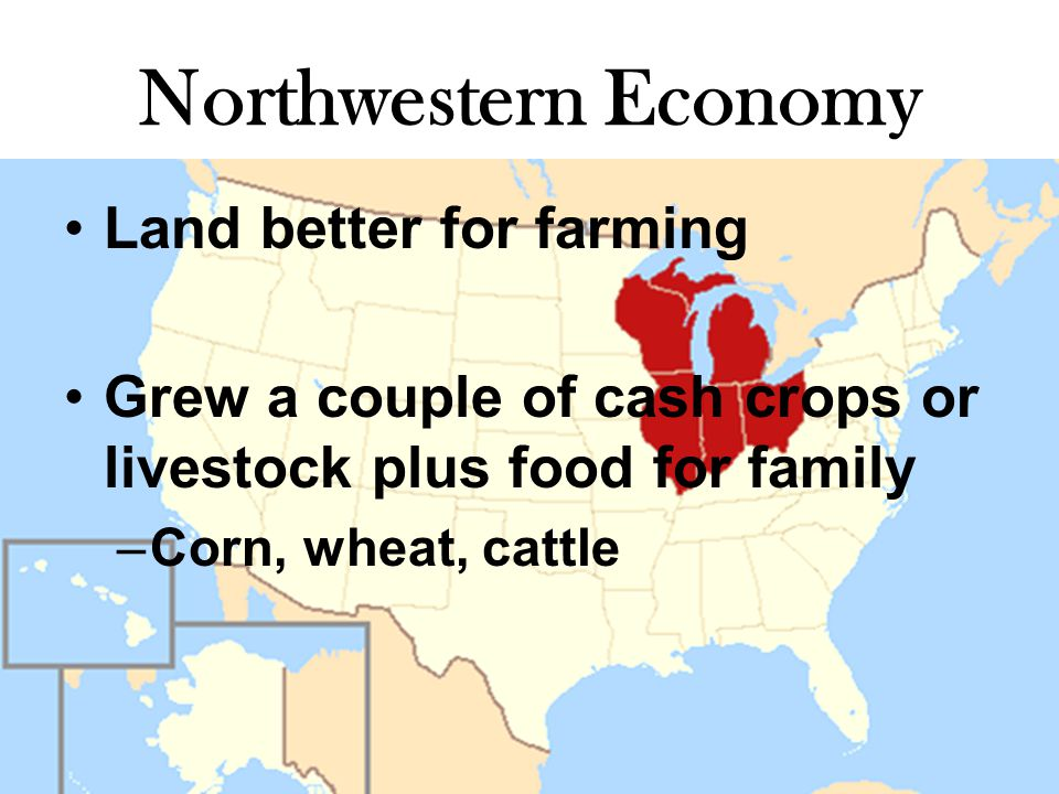 Northwestern Economy Land better for farming Grew a couple of cash crops or livestock plus food for family –Corn, wheat, cattle