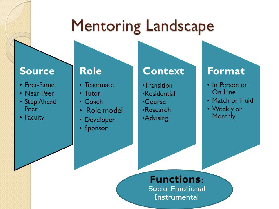 Mentoring Landscape Source Peer-Same Near-Peer Step Ahead Peer Faculty Role Teammate Tutor Coach Role model Developer Sponsor Context Transition Residential Course Research Advising Format In Person or On-Line Match or Fluid Weekly or Monthly Functions : Socio-Emotional Instrumental