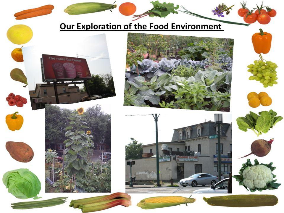 EW Individual Ecological Model