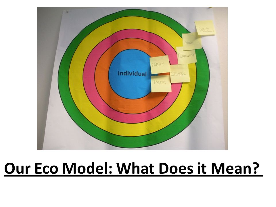 Our Eco Model: What Does it Mean?