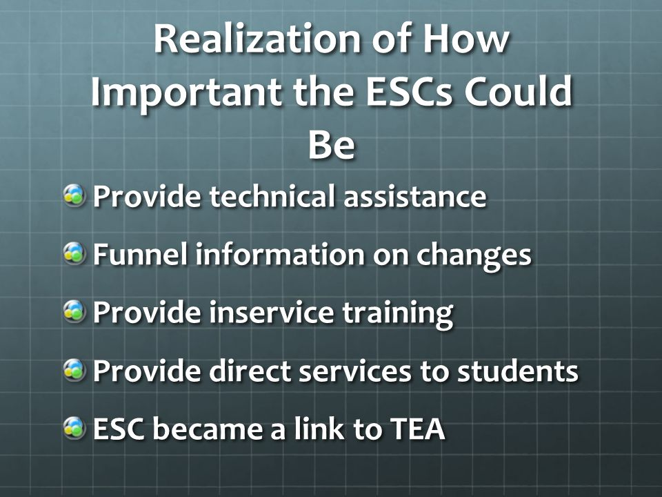 Realization of How Important the ESCs Could Be Provide technical assistance Funnel information on changes Provide inservice training Provide direct services to students ESC became a link to TEA