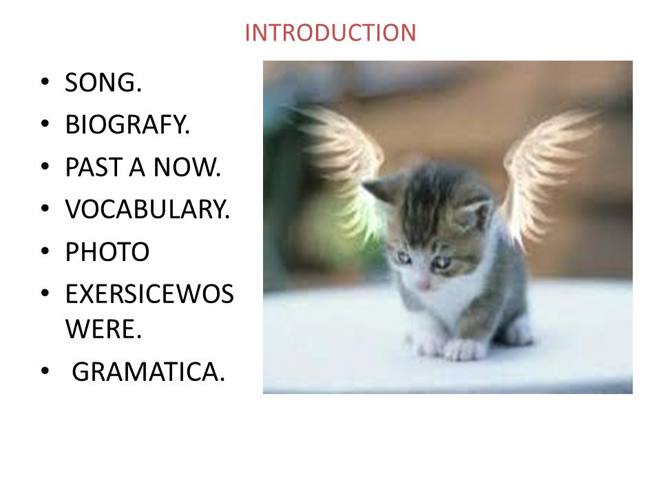 INTRODUCTION SONG. BIOGRAFY. PAST A NOW. VOCABULARY. PHOTO EXERSICEWOS WERE. GRAMATICA.