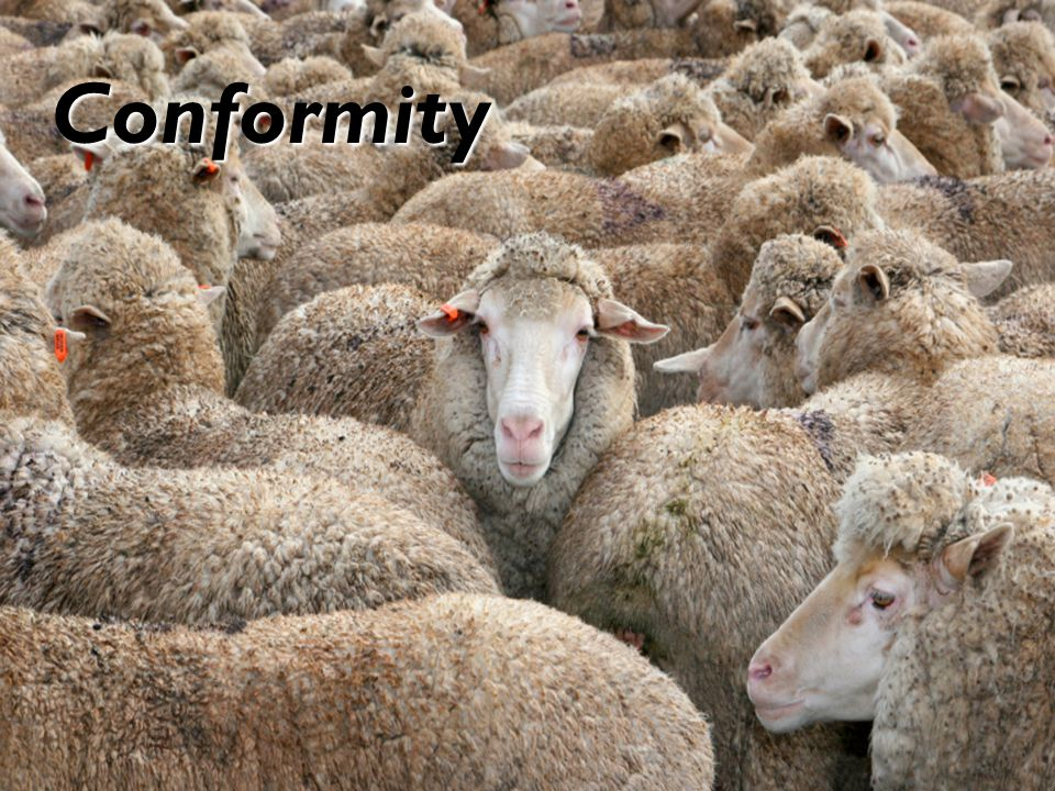 9 Conformity: 2 Types Normative influence – We conform to the group's rules in order to fit in, be accepted, be liked, or avoid dislike.