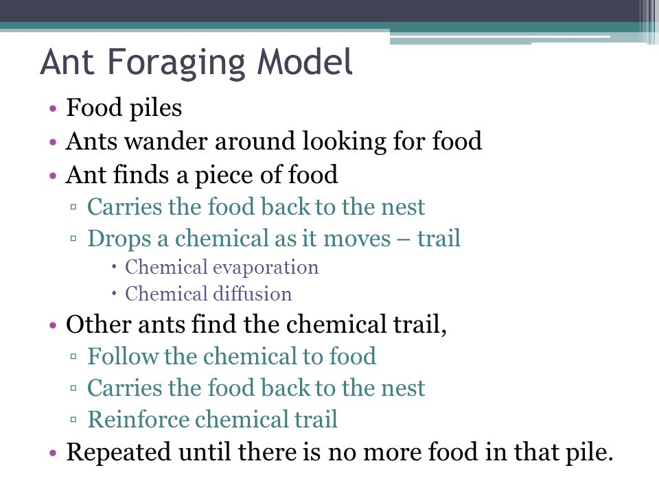Ant Foraging Model Food piles Ants wander around looking for food Ant finds a piece of food ▫Carries the food back to the nest ▫Drops a chemical as it moves – trail  Chemical evaporation  Chemical diffusion Other ants find the chemical trail, ▫Follow the chemical to food ▫Carries the food back to the nest ▫Reinforce chemical trail Repeated until there is no more food in that pile.