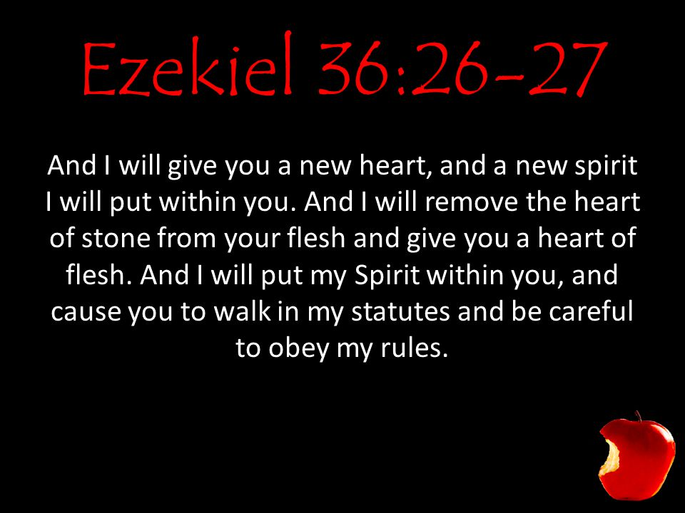 Ezekiel 36:26-27 And I will give you a new heart, and a new spirit I will put within you.