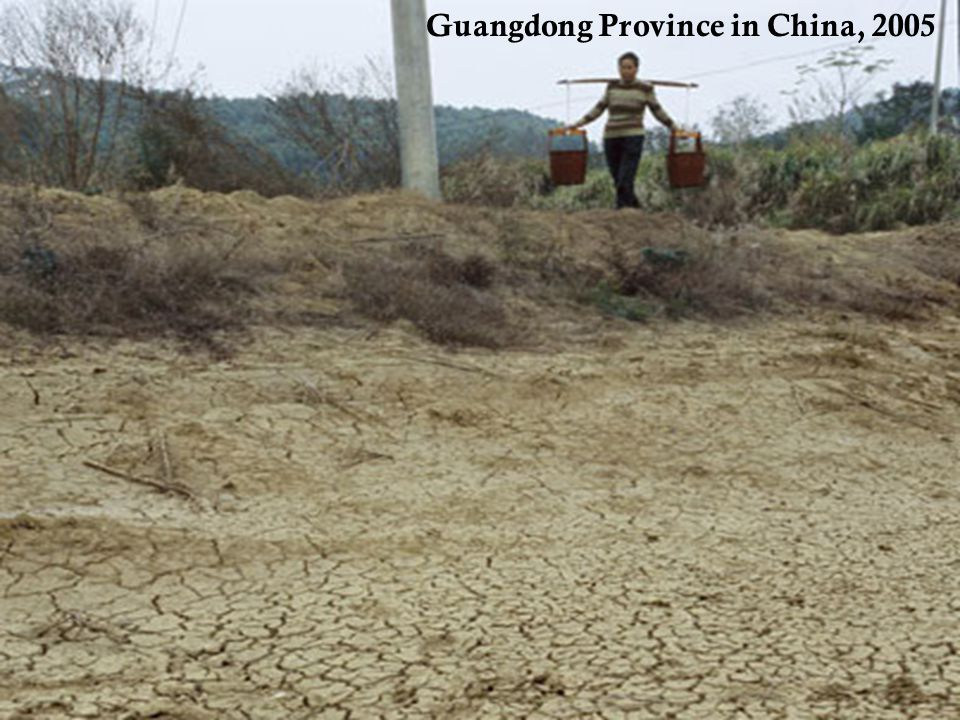 Guangdong Province in China, 2005