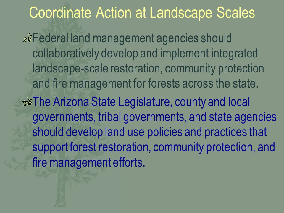 Coordinate Action at Landscape Scales Federal land management agencies should collaboratively develop and implement integrated landscape-scale restoration, community protection and fire management for forests across the state.
