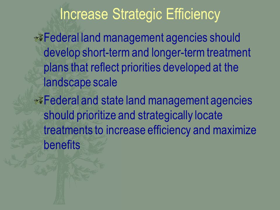 Increase Strategic Efficiency Federal land management agencies should develop short-term and longer-term treatment plans that reflect priorities developed at the landscape scale Federal and state land management agencies should prioritize and strategically locate treatments to increase efficiency and maximize benefits