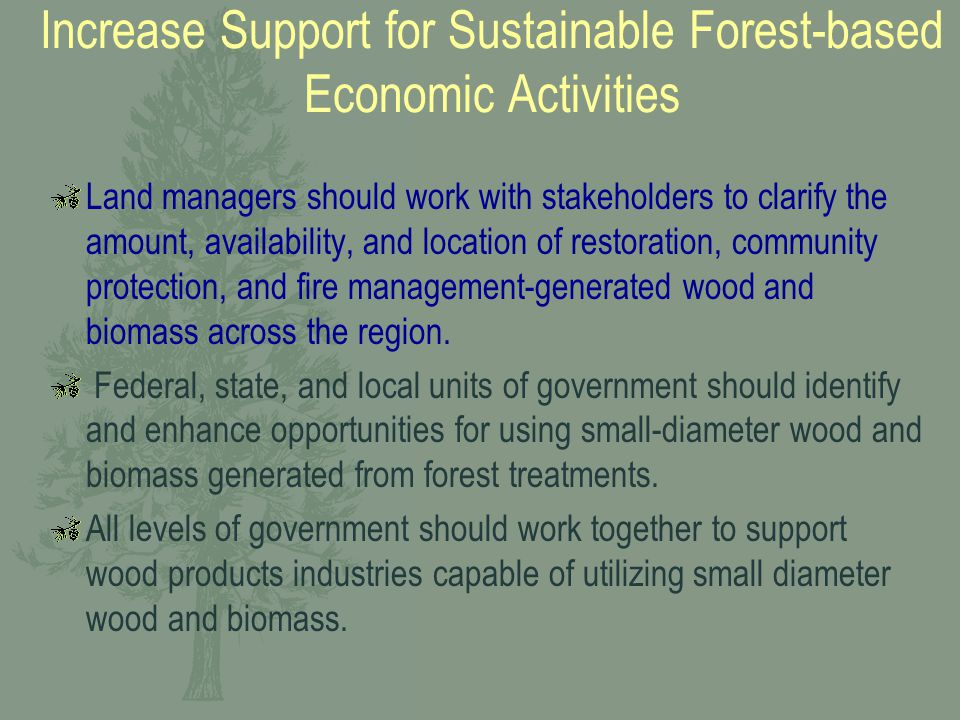 Increase Support for Sustainable Forest-based Economic Activities Land managers should work with stakeholders to clarify the amount, availability, and location of restoration, community protection, and fire management-generated wood and biomass across the region.