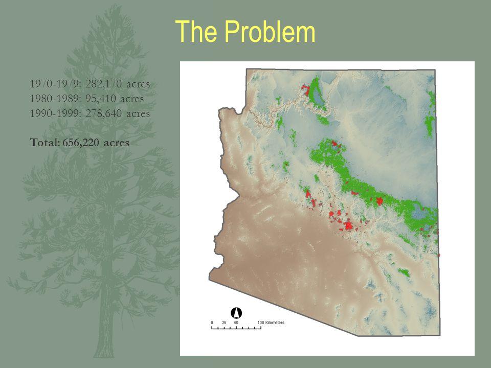1970-1979: 282,170 acres 1980-1989: 95,410 acres 1990-1999: 278,640 acres Total: 656,220 acres The Problem