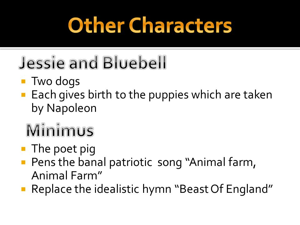 " Two dogs  Each gives birth to the puppies which are taken by Napoleon  The poet pig  Pens the banal patriotic song ""Animal farm, Animal Farm""  R"