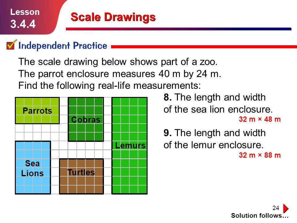 24 Scale Drawings Independent Practice Solution follows… Lesson 3.4.4 The scale drawing below shows part of a zoo. The parrot enclosure measures 40 m
