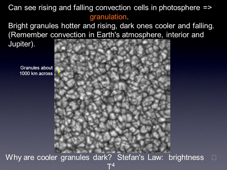 Can see rising and falling convection cells in photosphere => granulation. Bright granules hotter and rising, dark ones cooler and falling. (Remember