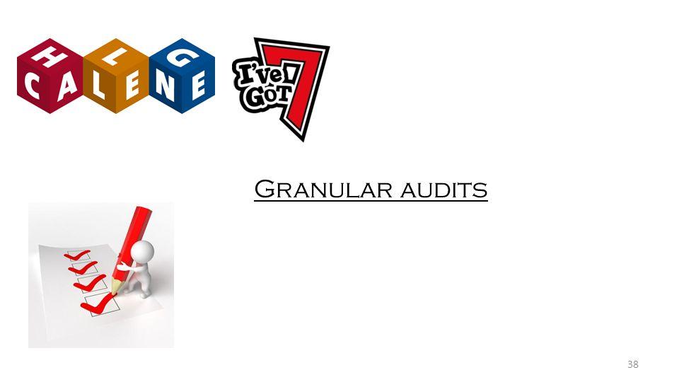 Granular audits 38