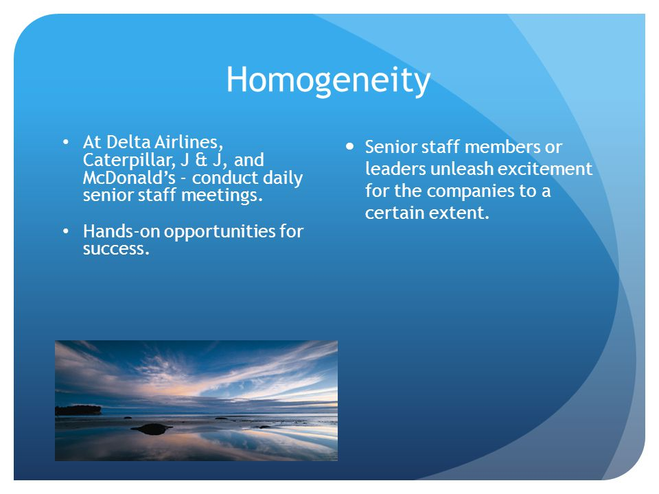 Homogeneity At Delta Airlines, Caterpillar, J & J, and McDonald's - conduct daily senior staff meetings.