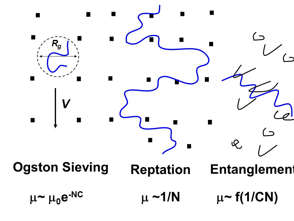 Mesh size (concentration) and molecular weight (chain length) will affect resolution viscosity limits applicable chain length